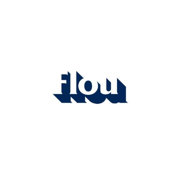 logo-flou